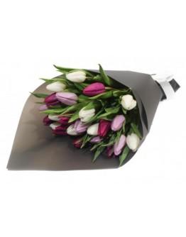 Микс тюльпанов 25