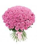 101 Роза Aqua