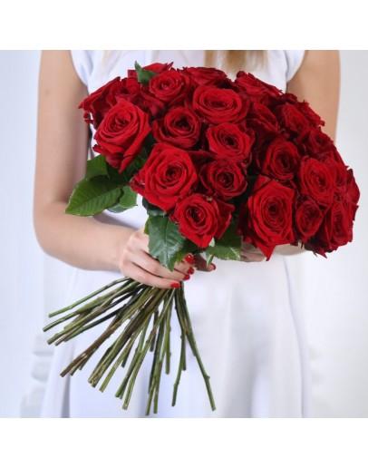 Розы Красные 31