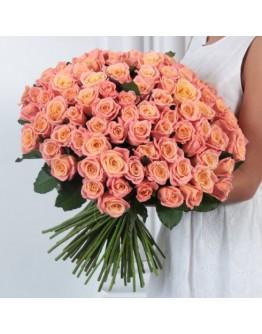 101 роза Терракот