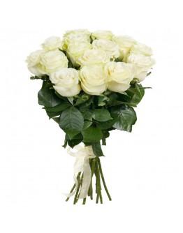 Розы Avalanche 31шт