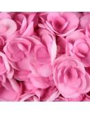 Гортензии Pink