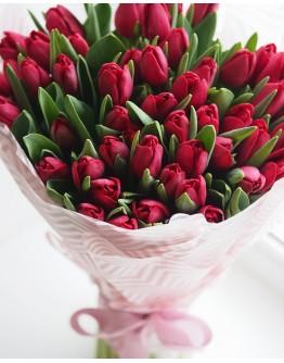 Красные тюльпаны 51