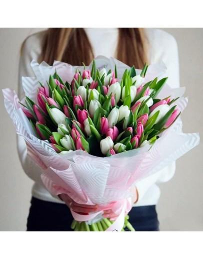 Тюльпаны white-pink 51